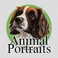 Animal Portaits