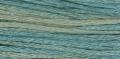 2116 Blue Fescue
