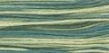 2146 Eucalyptus