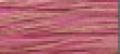 2276 Camellia