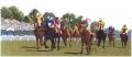 Horse Racing Chart