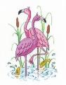 ***Karen Carter - Flamingos Chart