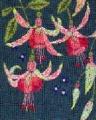 Fuchsia Kit