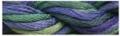 WC 294 Black Iris