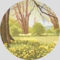 Daffodil Wood Chart